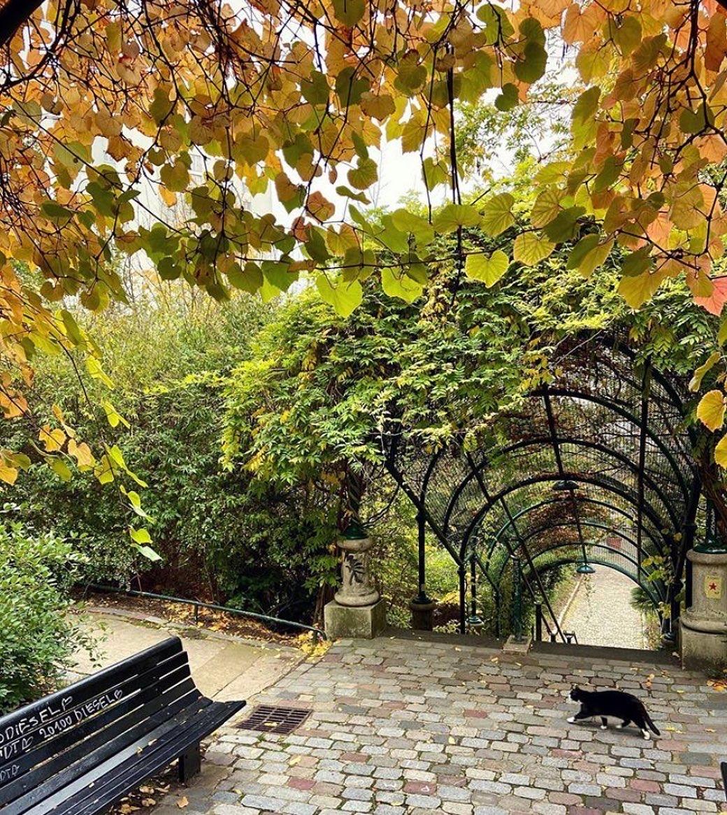 Bol d'air : les parcs et jardins ouverts pendant ce deuxième confinement