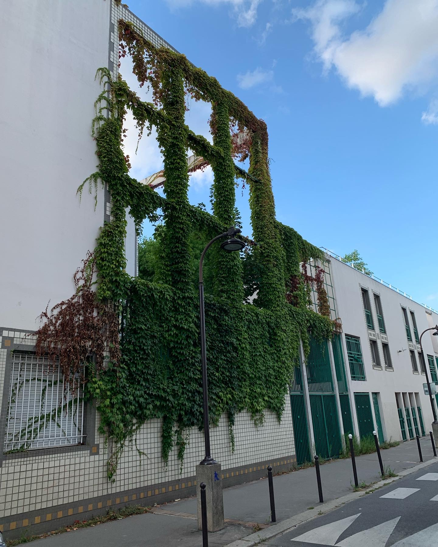 Collège Flora Tristan : derrière le lierre, une ferme urbaine